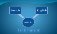 ترجمة احترافية لنصوص  مقالات و مواقع  عربية فرنسية إنجليزية
