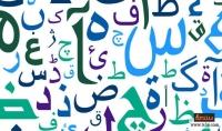 التدقيق اللغوي باللغتين العربية والإنجليزية.