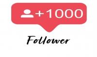 1000 متابع انستجرام حقيقيين=10 دورالات