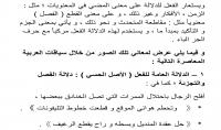 تدقيق لغوي نحوي وصرفي و إملائي مع التصحيح الدقيق باللغة العربية