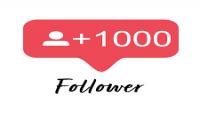 اضافة لك 1000 متابع على الانستغرام جودة عالية 100%