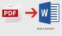 تفريغ ملفات PDF الى Word
