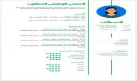 كتابة سيرة ذاتية احترافية  CV  باللغة الإنكليزية أو العربية