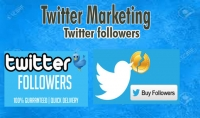 متابعين و لايكات تويتر حقيقية 100%