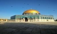 ترجمة المقالات والنصوص من العربية الى الانجليزية والعكس