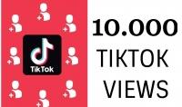 10 آلاف مشاهدة تيكتوك ستزيد من تصدرك للترند