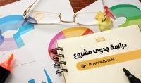 دراسات جدوى مخصصة للسوق السعودي