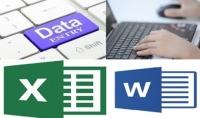 ادخال بيانات بكافة انواعها حسابية او كتابية او صور على برنامج اكسيل 100 سطر