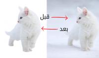 ازاله خليفه ل100 صوره انت تريدها بطريقه احترافيه