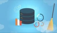 معالجة مسبقة للبيانات  تنظيف وتنسيق البيانات باستخدام MS Excel  Python  أو Power BI
