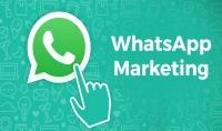 التسويق المستهدف عبر واتساب