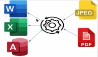 تفريغ 30 صفحة من البيانات من الصور و ملفات PDF الى Access Word Excel