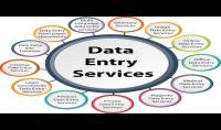 مدخل بيانات  data entry  ادخال او نقل او البحث عن بيانات