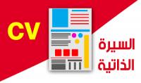 سيرة ذاتية إحترافية باللغة العربية