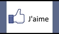 أضافة 8000 لايك لصفحتك على الفيس بوك ب10 دولار